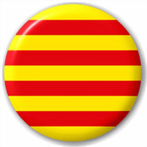 Catalonia Catalan Region Flag 25Mm Pin Button Badge