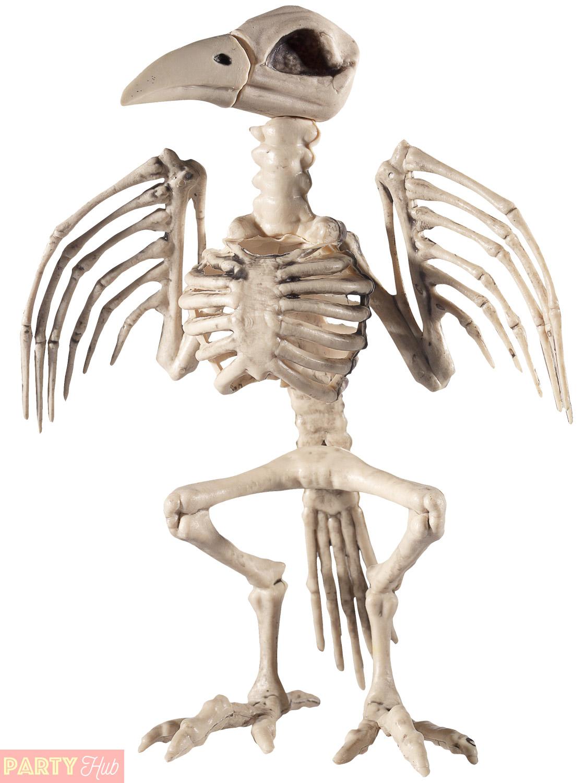 Halloween Animal Skeleton Prop Party Decoration Rat Spider