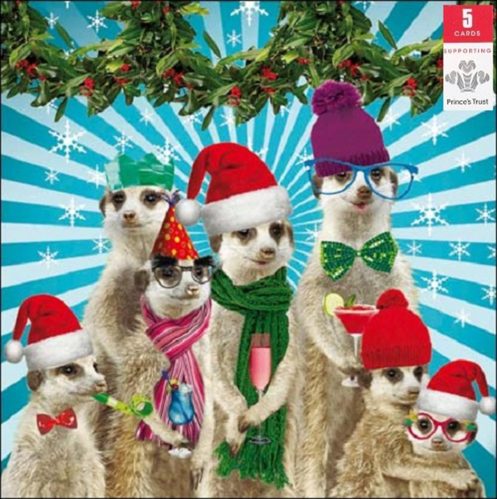 Pack Of 5 Meerkat Princes Trust Charity Christmas Cards