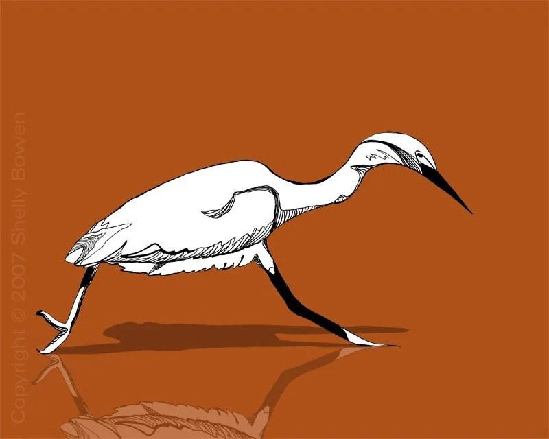 snowy white egret print 8x10 (c) bowen