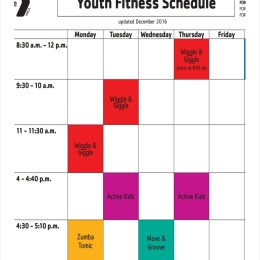 Free 10 Fitness Schedule Examples Samples In Pdf Google Docs Google Sheets Excel Word