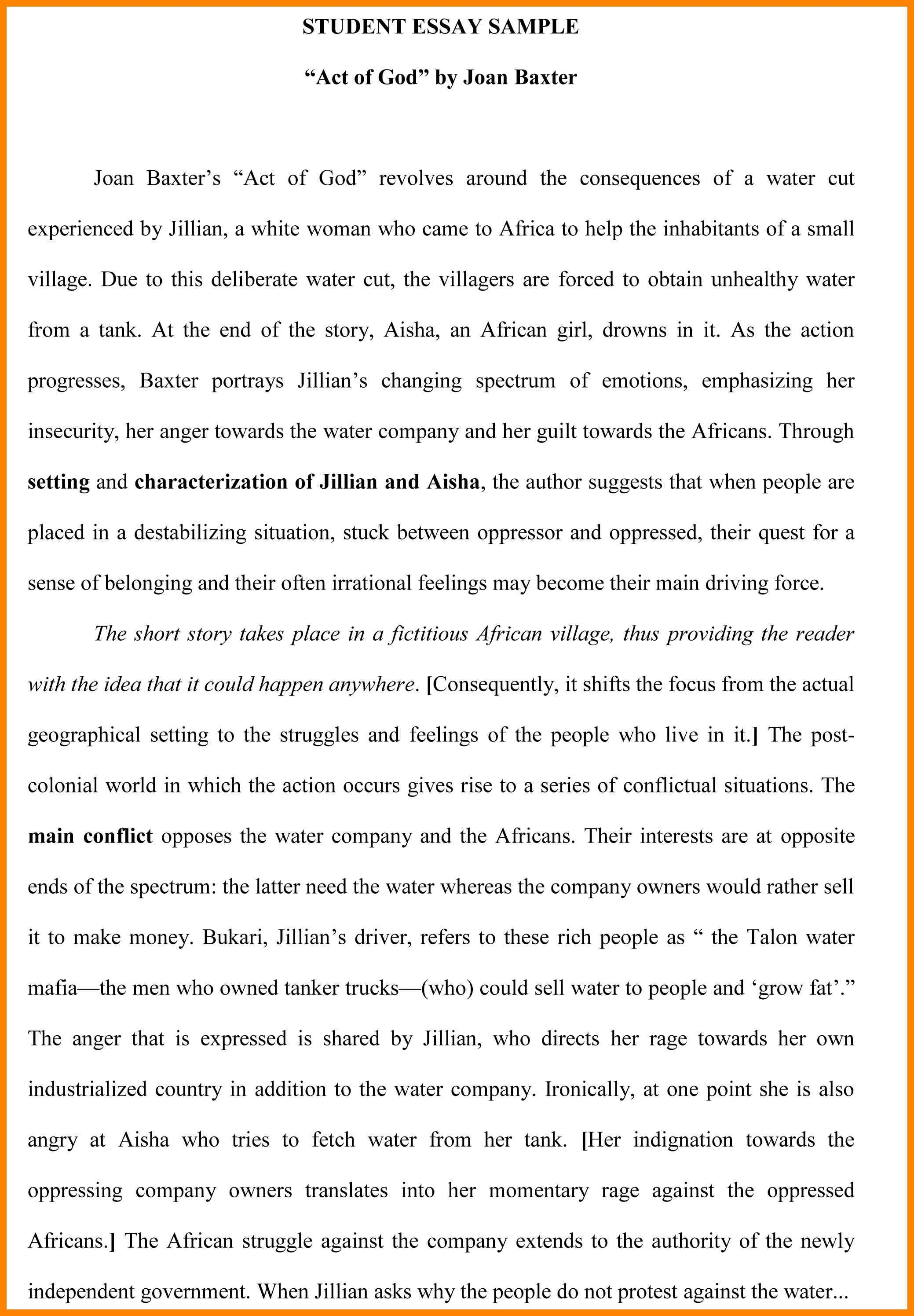 Student Essay Examples