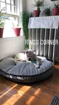 Purchase Dog Sofa Bed Costco Up To 67 Off