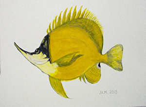 Wili Wili in acrylics by Judith Martinez Acrylic ~ 6 in x 8 in