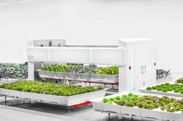 4-inside-silicon-valleys-first-autonomous-farm-686x457 Inside Silicon Valley's latest, most autonomous farm yet Inspiration