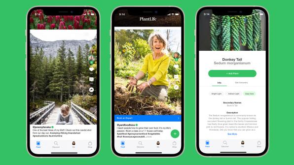"""i 1 90681171 plantlife is tiktok for your plants made by apple and nike alums Novo aplicativo é uma espécie de """"TikTok"""" para quem ama plantas"""