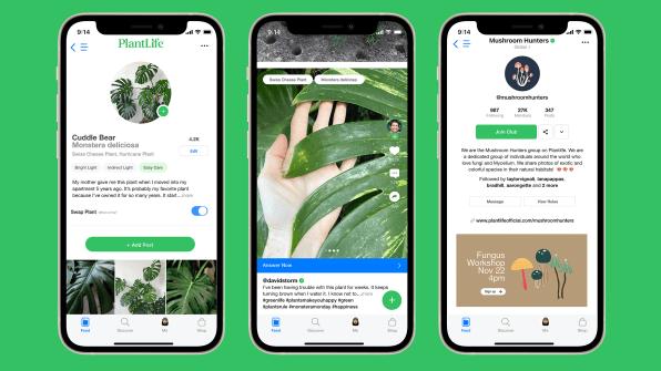 """i 2 90681171 plantlife is tiktok for your plants made by apple and nike alums Novo aplicativo é uma espécie de """"TikTok"""" para quem ama plantas"""