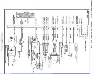84 Fiero Fuse Box Diagram  Wiring Diagram And Fuse Box