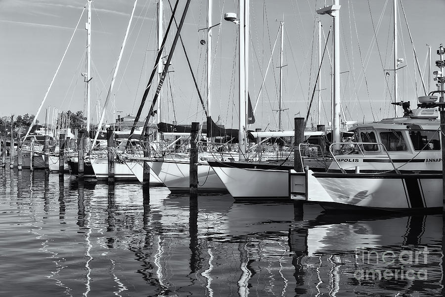 Annapolis Yacht Club Iv Photograph By Clarence Holmes