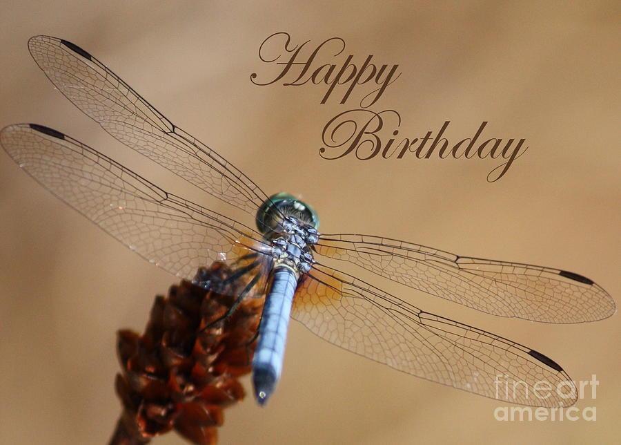 Dragonfly Birthday Card Photograph By Carol Groenen