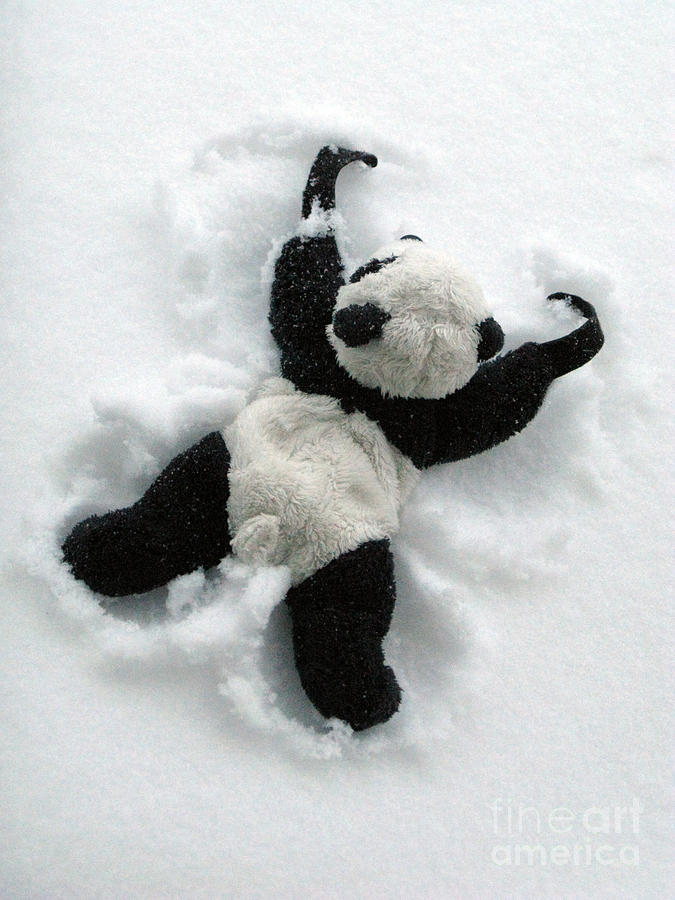 Panda Bear Cubs In Snow Art