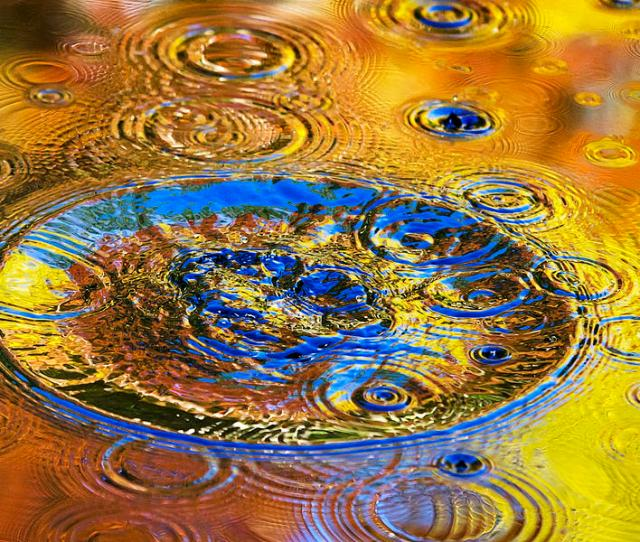 Colorful Photograph Good Vibrations Nature Abstract Art By Christina Rollo