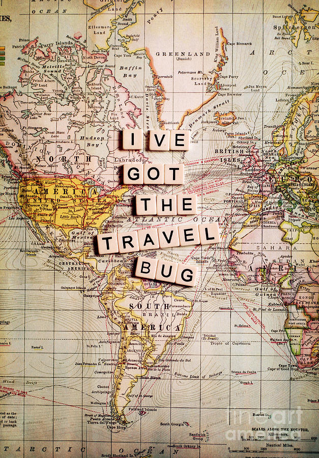 I Ve Got The Travel Bug Photograph By Sylvia Cook