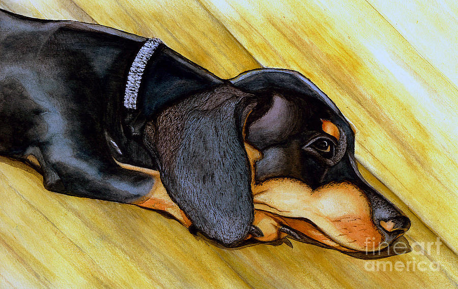 Paintings Dachshunds Dogs