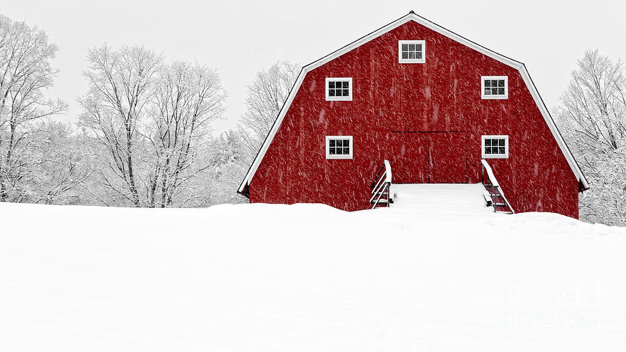 New England Red Barn In Winter Snow Storm Photograph By