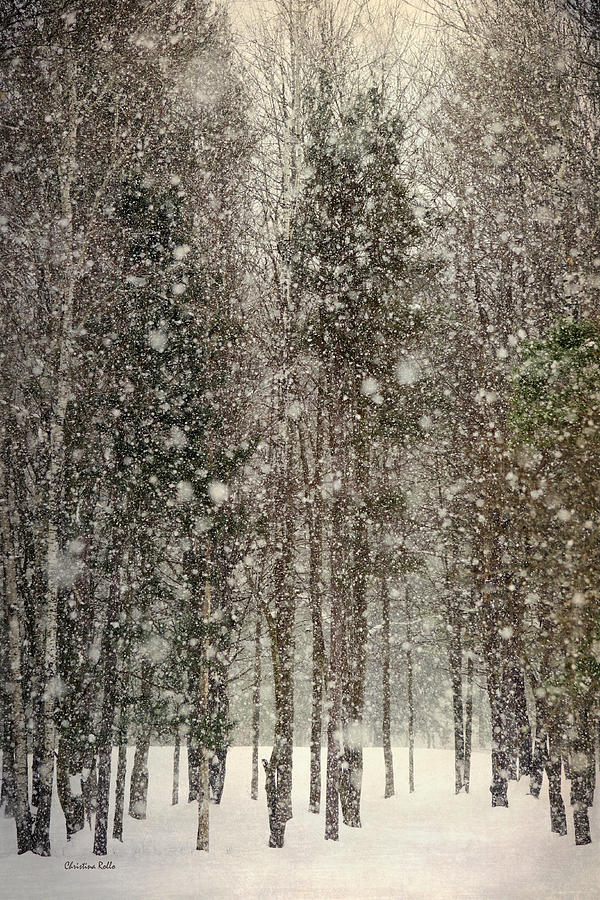 Scenic Snowfall Landscape Art Prints for Sale