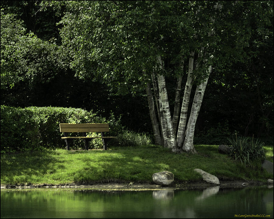 Shelby Township S Heritage Garden Park Bench Photograph By