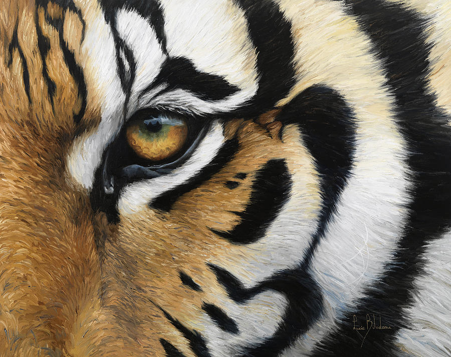 Tiger Eye Painting By Lucie Bilodeau