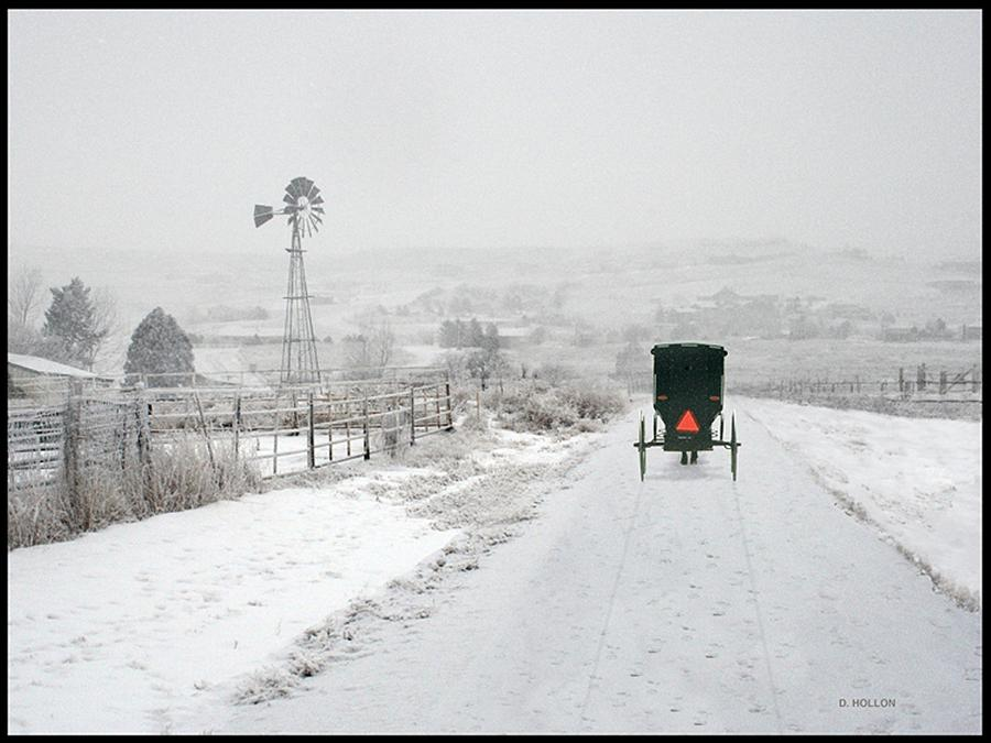 Amish Buggy Photograph By Dick Hollon
