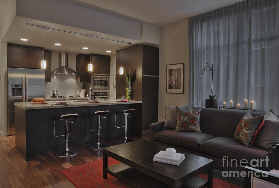 Contemporary Kitchen And Living Room