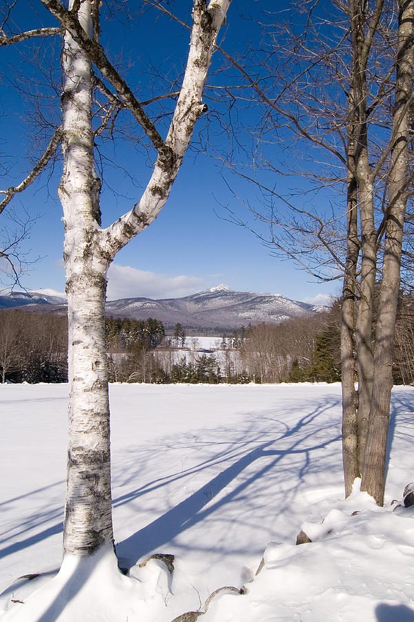 Mt Chocorua Winter Vertical Photograph By Larry Landolfi