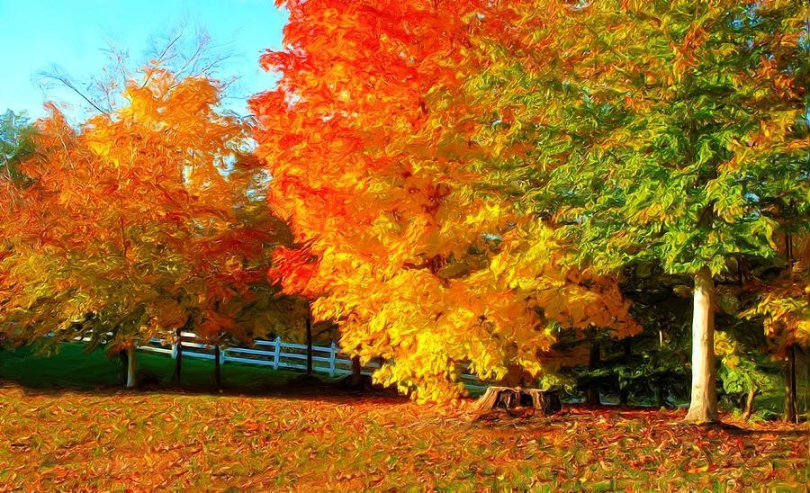 https://i2.wp.com/images.fineartamerica.com/images-medium-large/ohio-autumn-maples-dennis-lundell.jpg