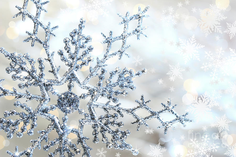 Silver Blue Snowflake Photograph By Sandra Cunningham