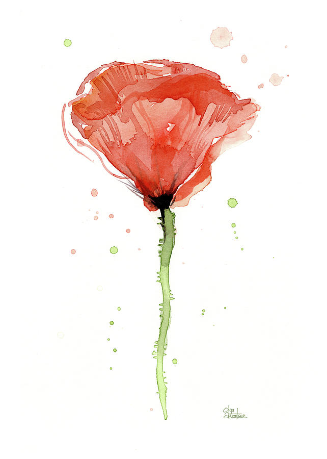 Abstract Red Poppy Watercolor Painting By Olga Shvartsur