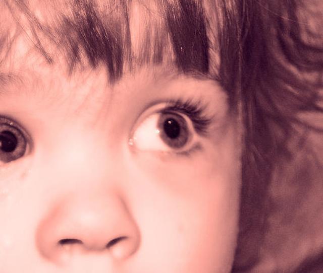 Baby Photograph Babygirl By Shauna Obrien