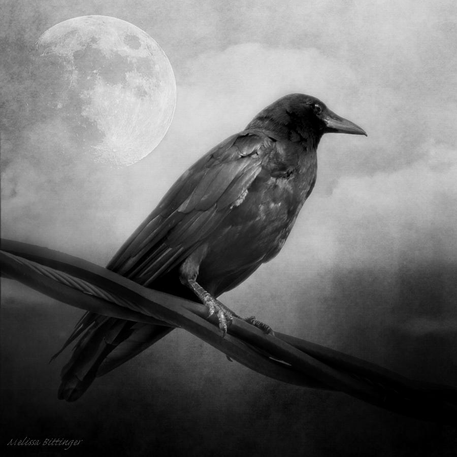 Image result for GOTHIC BLACK AND WHITE IMAGE