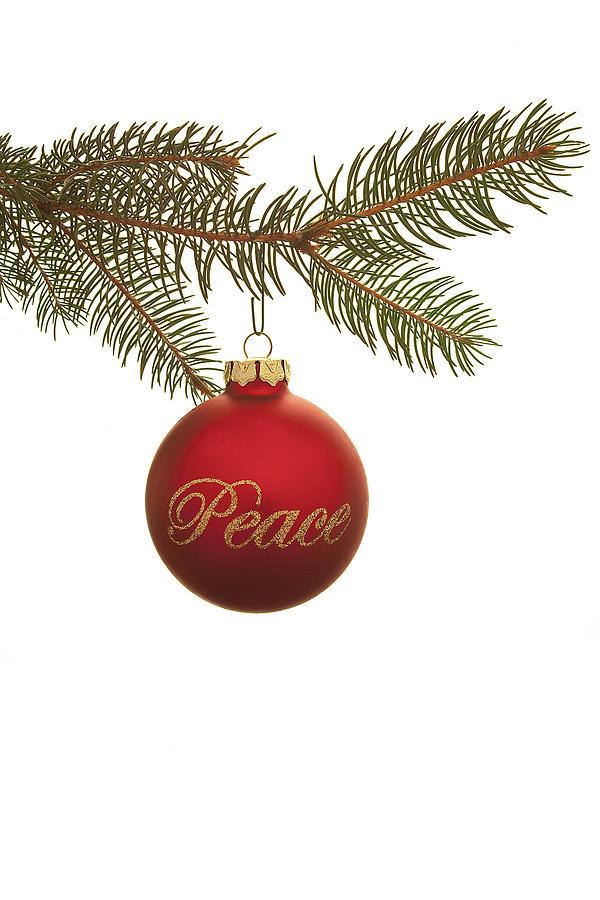 Christmas Peace Photograph By Andrew Soundarajan