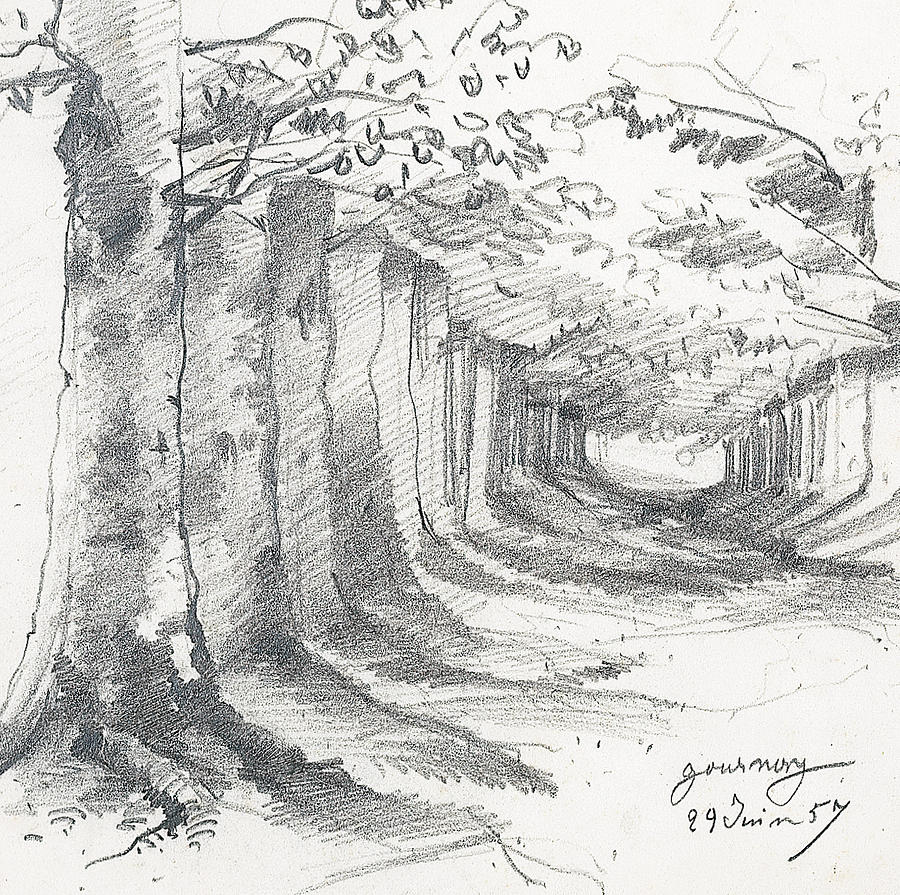 Forest Lane At Gournay Drawing By Claude Monet
