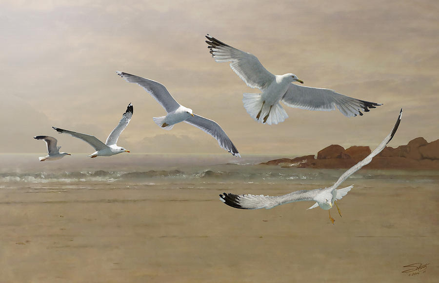 Seagulls Flying Along The Beachfront Painting By M Spadecaller