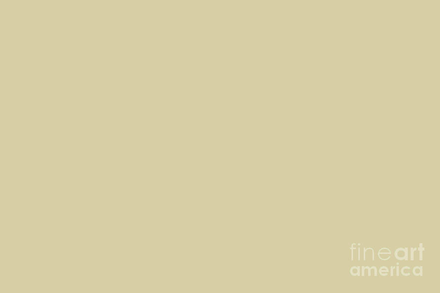 Sherwin Williams Trending Colors Of 2019 Ancestral Gold Pastel Light Brown Sw 6407 Digital Art By Melissa Fague