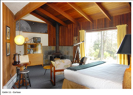 Andiron Seaside Inn and Cabins on Mendocino Coast with FloBed