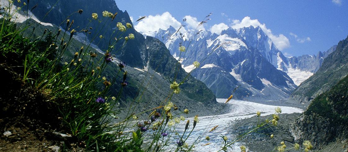 alpes mont blanc paradis des sommets
