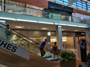 Apple Store + Mi Store