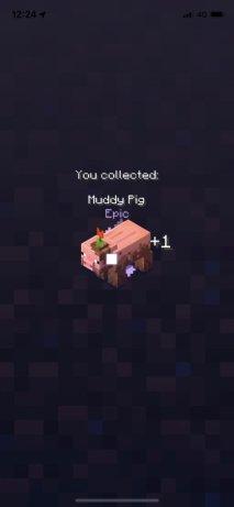 Minecraft Earth Prise en main (27)