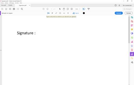 Signer PDF 3