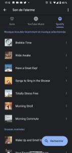 Astuces Spotify 32