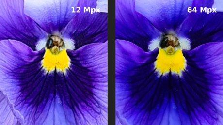 Comparo S20 Plus fleur