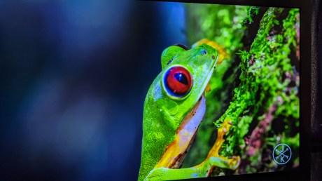 Costa Rica 4K - YouTube