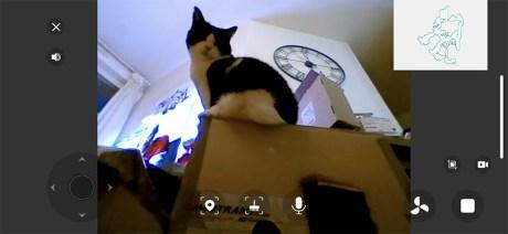 Vous pouvez surveiller vos animaux, s'ils sont en hauteur // Source : Frandroid / Yazid Amer