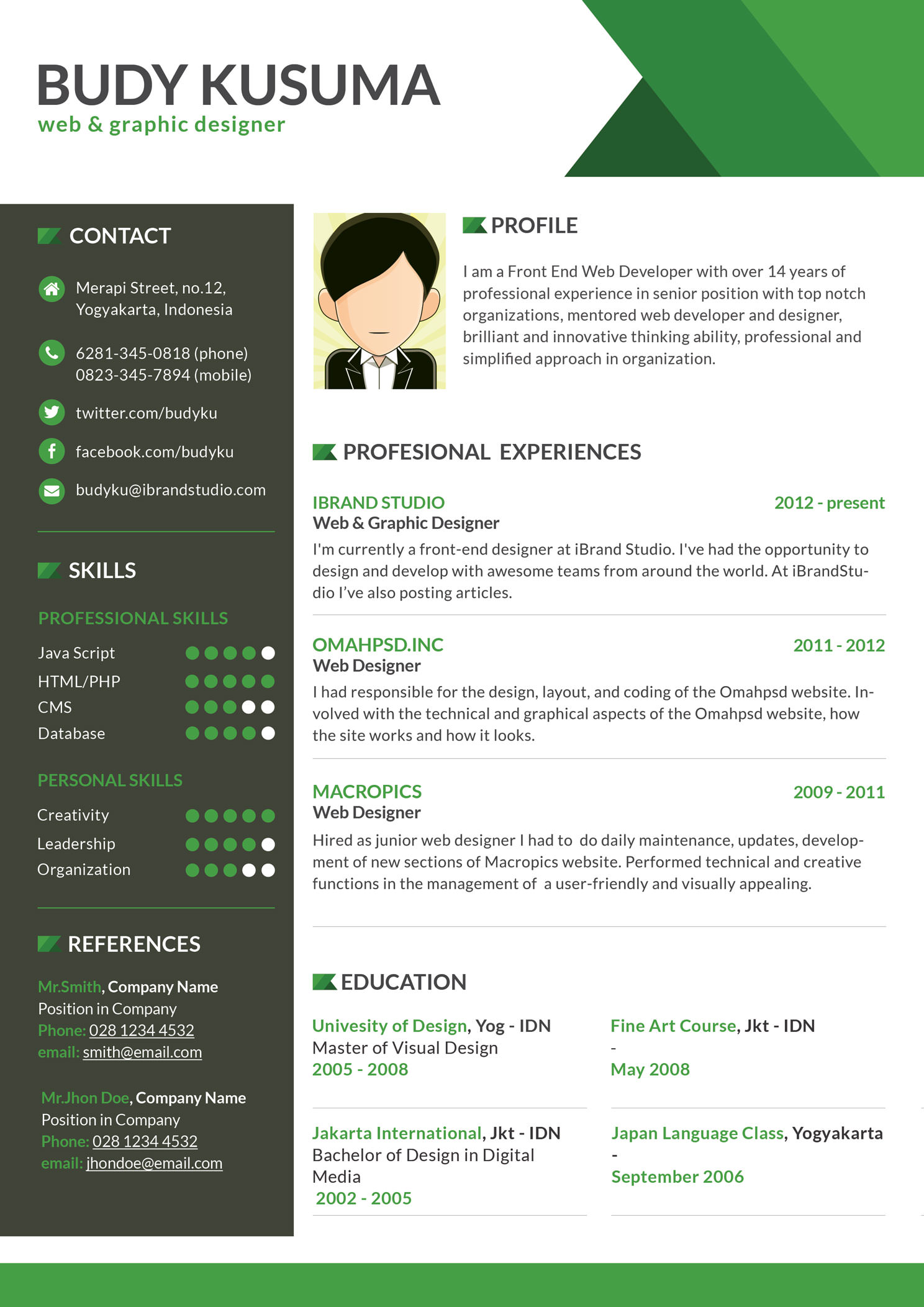 flasher resume template green clean resume templatedownload