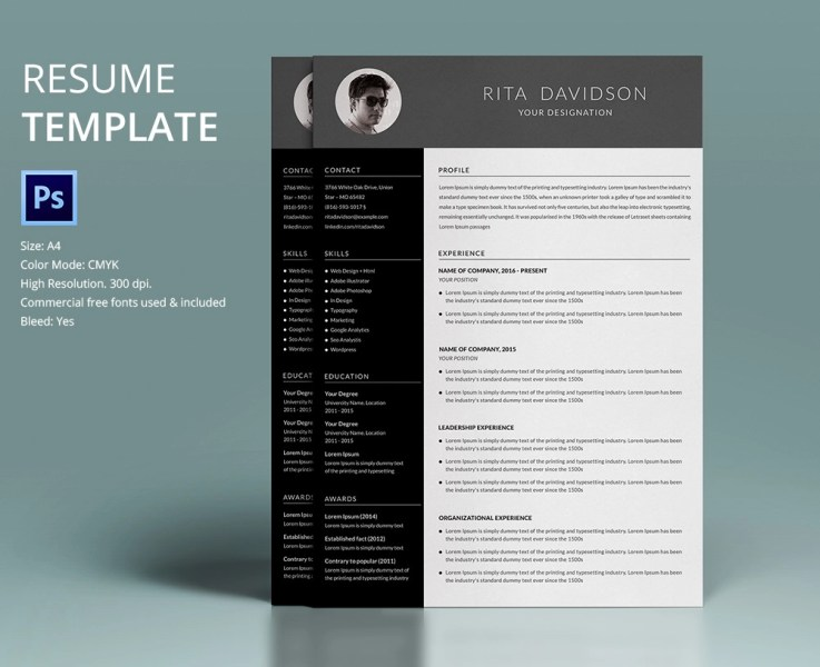Free Professional Resume Templates  Resume Templates Free     Resume Template Designs Freecreatives