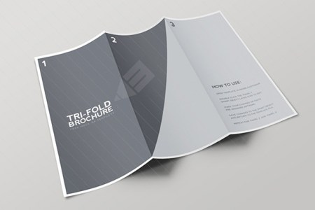 blank tri fold brochure template free download   Bire 1andwap com blank tri fold brochure template free download  blank tri fold brochure  template