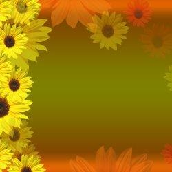 Sunflower Border Divider   Gardening: Flower and Vegetables