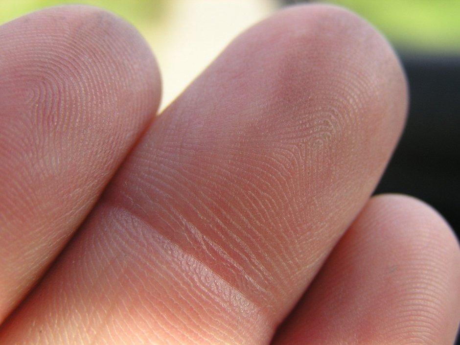 fingers,hand,finger,print
