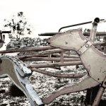 Free Abandoned Playground 1 Stock Photo Freeimages Com