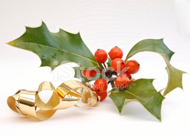 Decoration De Noel Avec Du Houx Une Couronne De Nol Pour